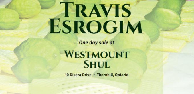 Buy Esrog Thornhill Succos orthodox synagogue